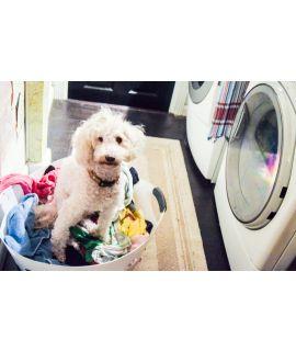 Huishoudelijke hulp met ervaring